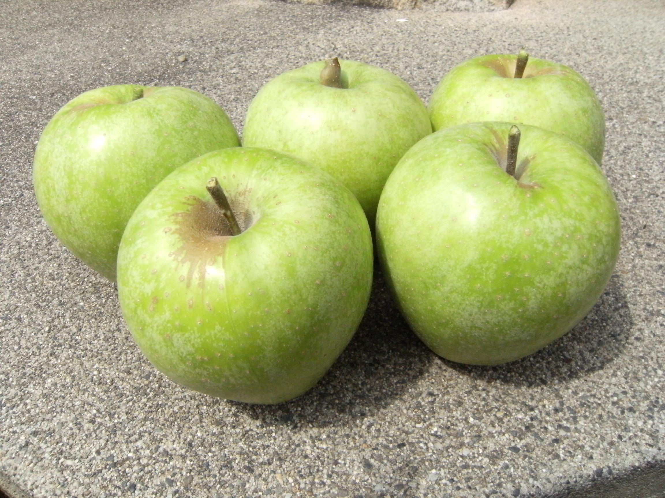 りんご 王林